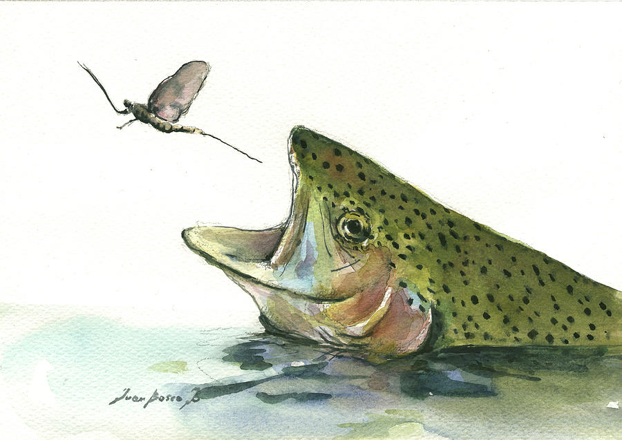 Rainbow Trout Painting - Rainbow trout by Juan Bosco