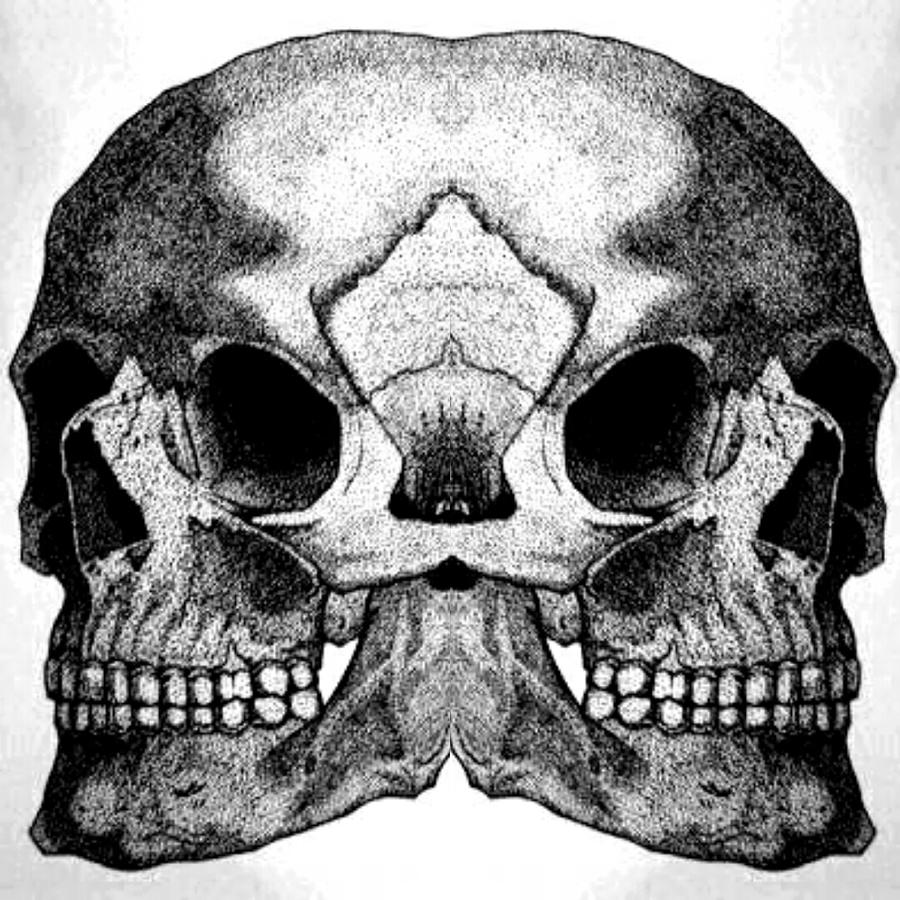 Skull Drawing - Realistic Of Memory by Yudhit Hadi