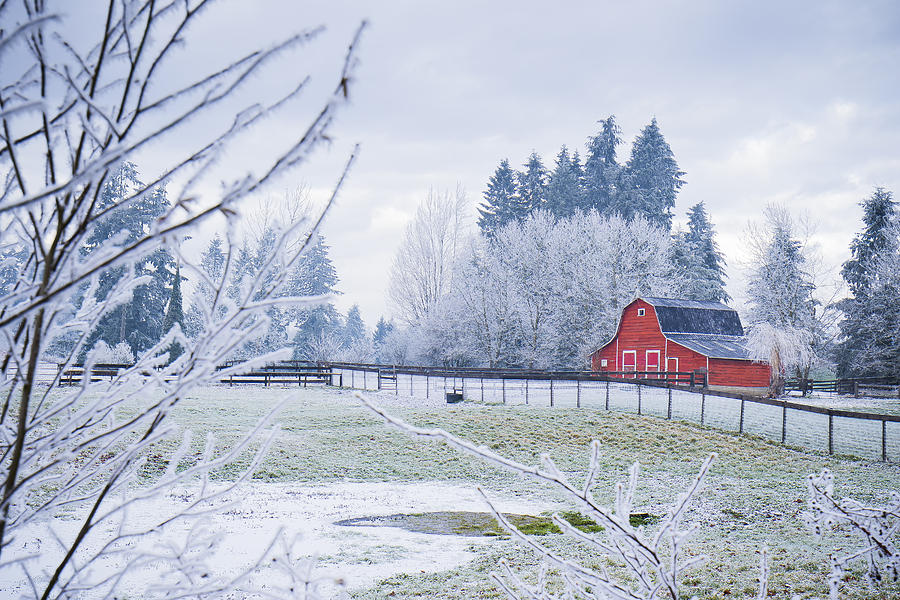 Canada Photograph - Red Barn by Windy Corduroy