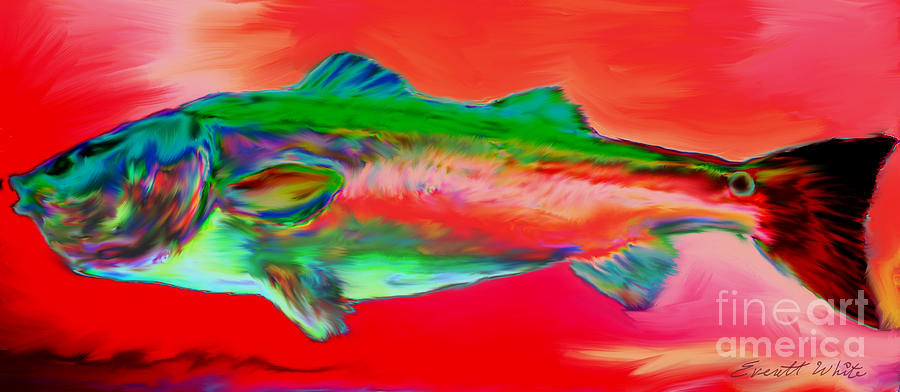 Red Drum. Spot Tail Painting - Red Drum by Everett White