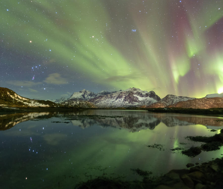 Northern Lights Photograph - Reflected Lights by Alex Conu