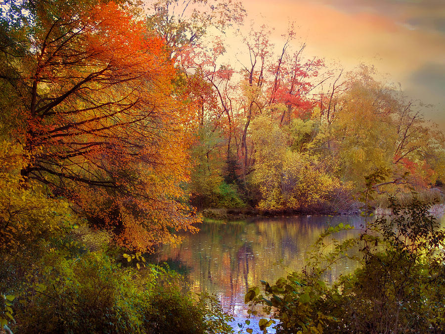 Autumn Photograph - Reflections Of Autumn by Jessica Jenney
