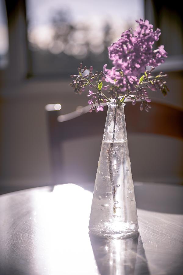 Vase Photograph - Reflections by Sotiris Filippou