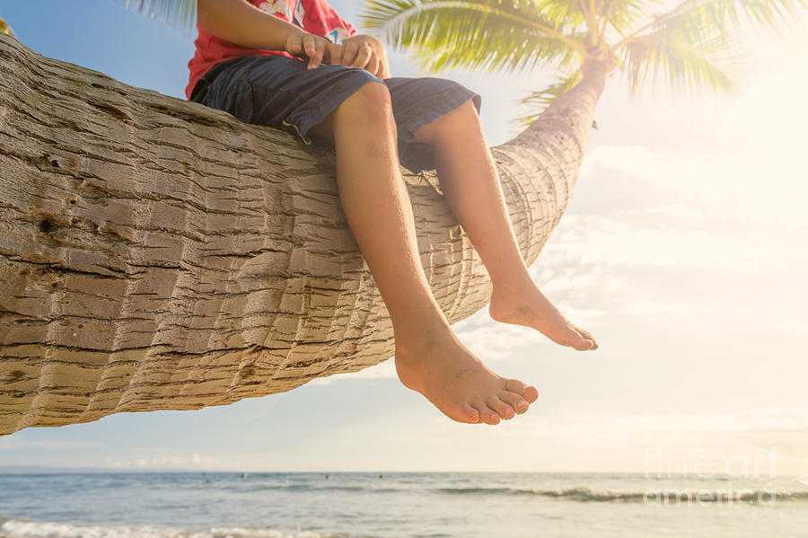 Palm Tree Photograph - Relaxing by Mariusz Blach
