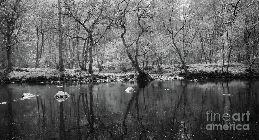River Wharfe Photograph