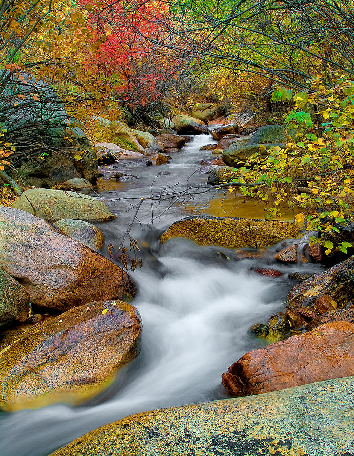 Fall Colors Photograph - Rock Creek by Tim Reaves