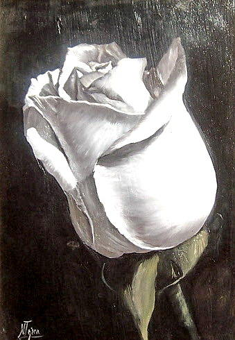 Rose 2 Painting by Natalia Tejera