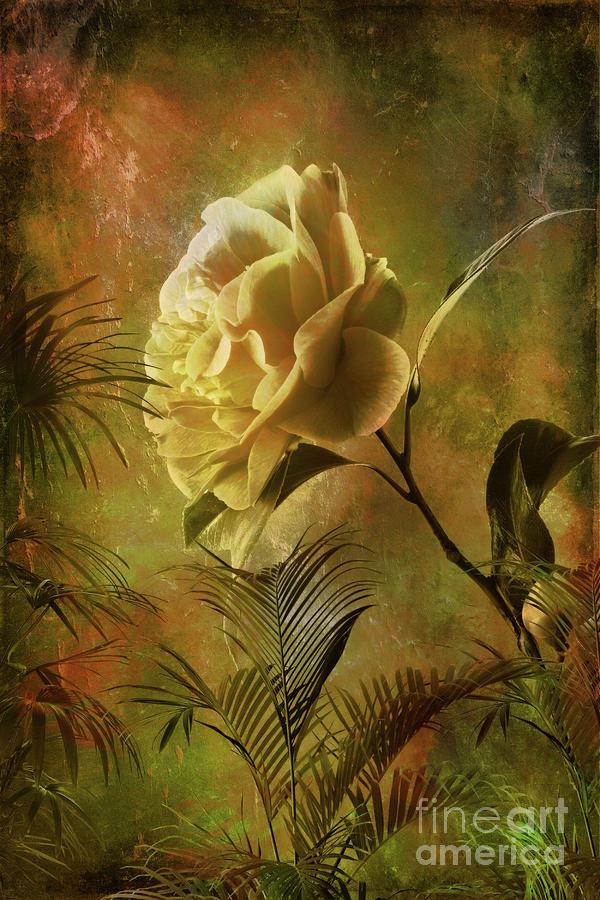 Rose Digital Art - Rose by Andrzej Szczerski