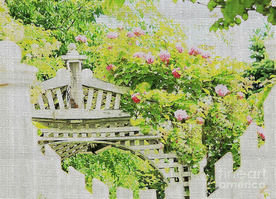 Rose Arbor Photograph By Sharon Johnston