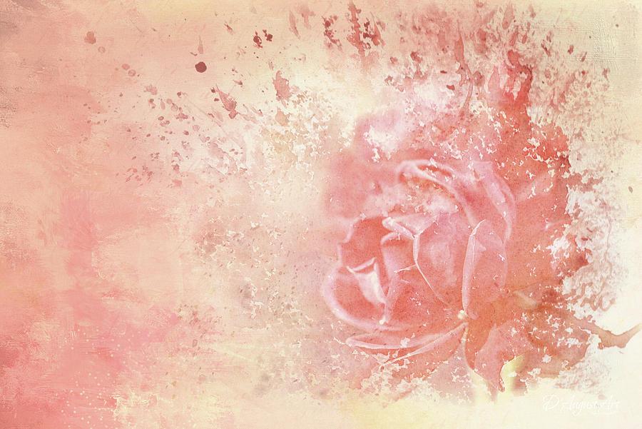 Rose Colored Splashes Mixed Media