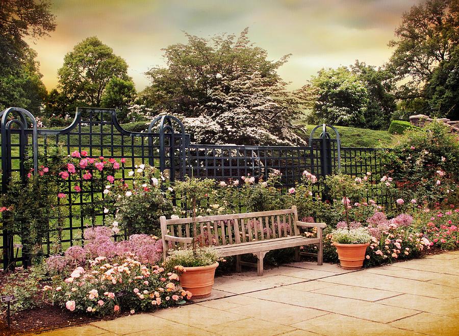 Rose Garden Trellis Photograph By Jessica Jenney