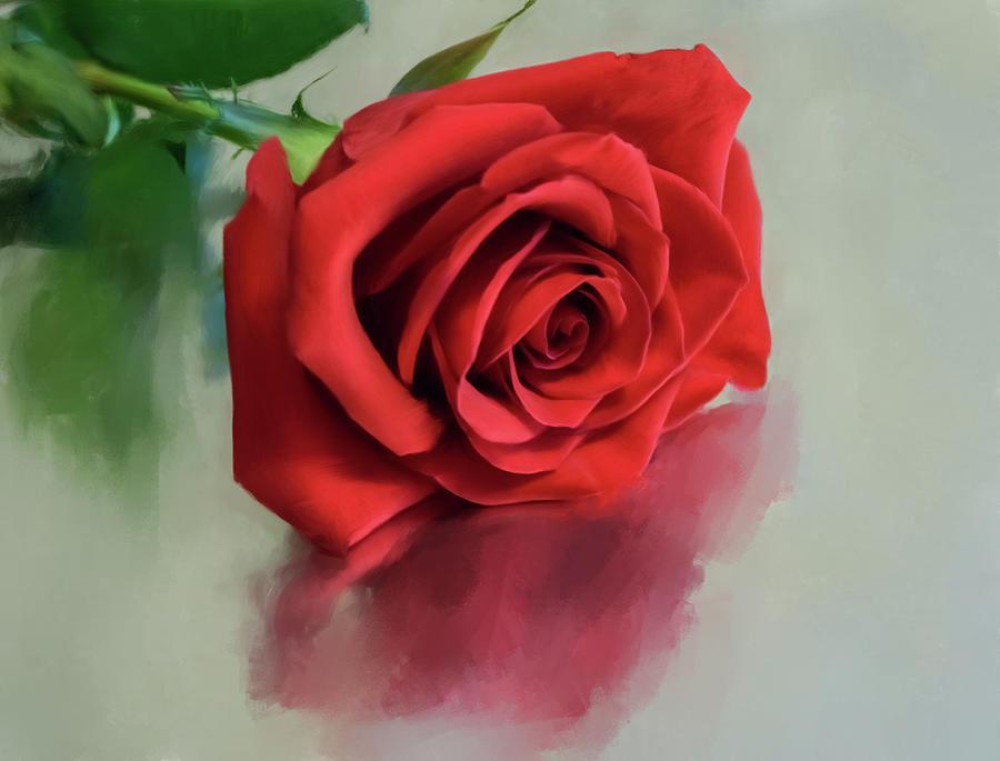 Botanical Painting - Rose Reflection by Garvin Hunter