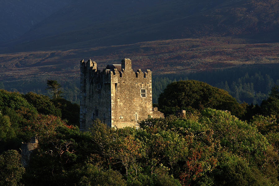 Castle Photograph - Ross Castle, Killarney National Park by Aidan Moran