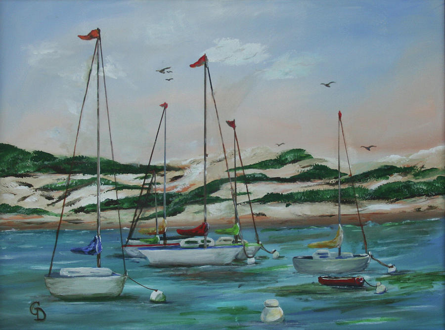 Safe Harbor by Gail Daley