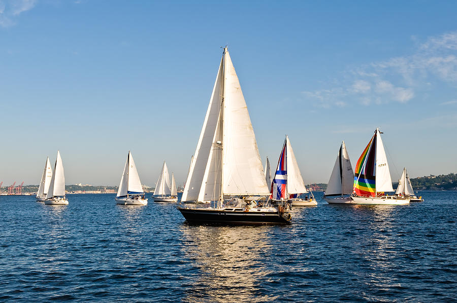 Seattle Photograph - Sailboats by Tom Dowd