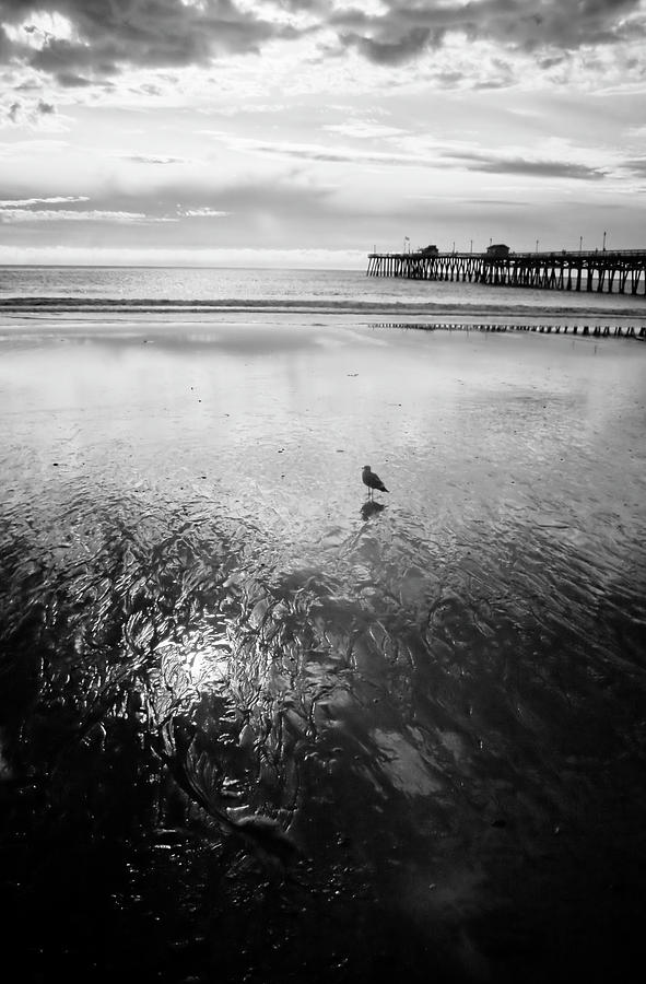 Infra Red Photograph - San Clemente Pier by G Wigler