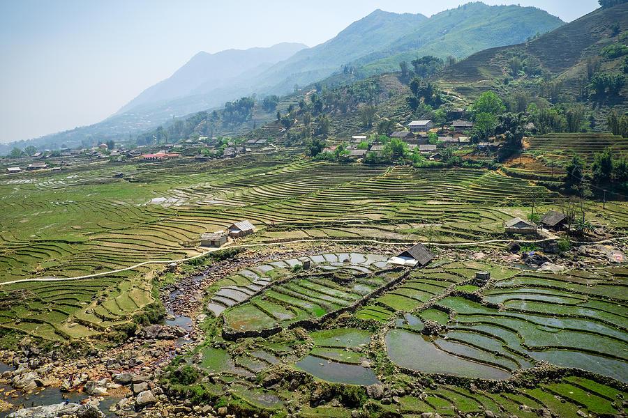 Sapa Photograph - Sapa Rice Fields by Michelle Lee