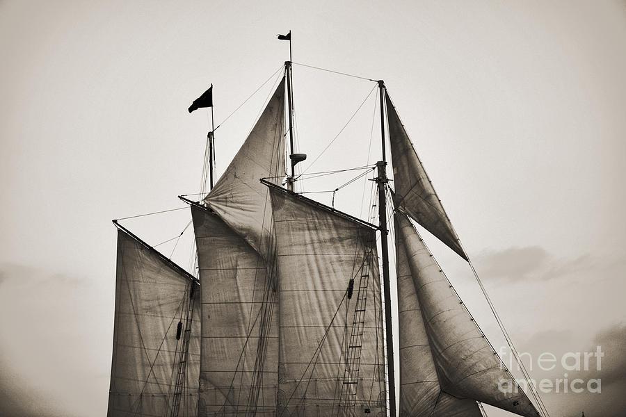Tall Ship Photograph - Schooner Pride Tall Ship Charleston Sc by Dustin K Ryan