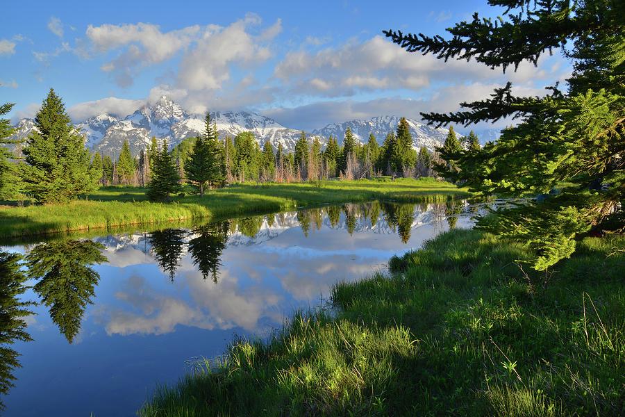 Grand Teton National Park Photograph - Schwabacher Landing Morning by Ray Mathis
