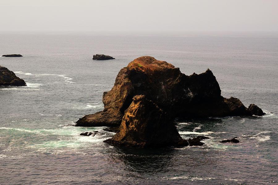 Sea Mounts by Frank Wilson