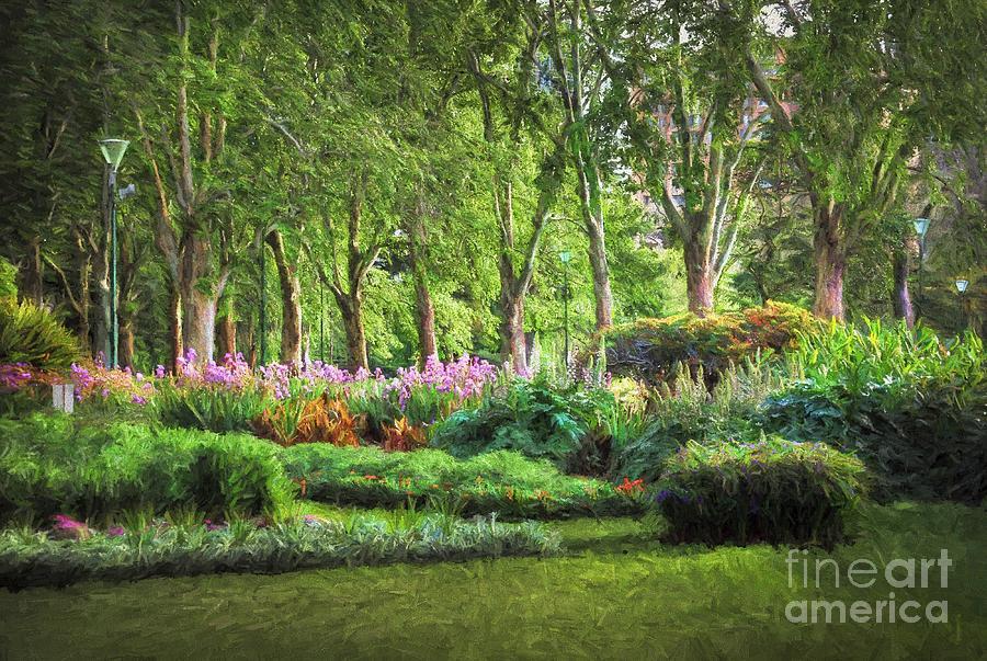 Australia Photograph - Secret Garden    Op by Ray Warren