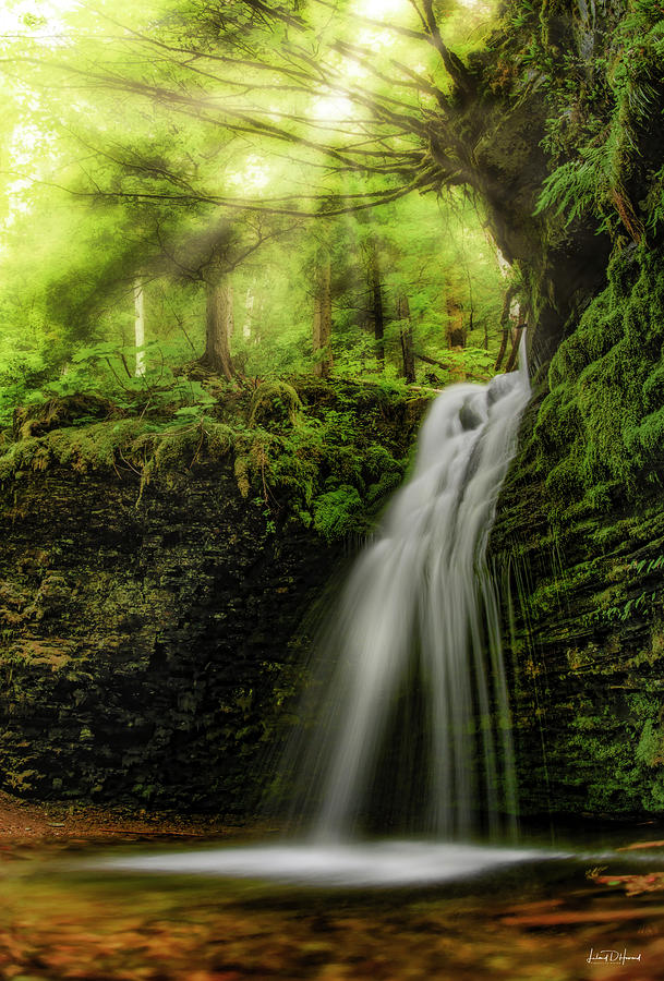 Nature Photograph - Shadow Falls by Leland D Howard