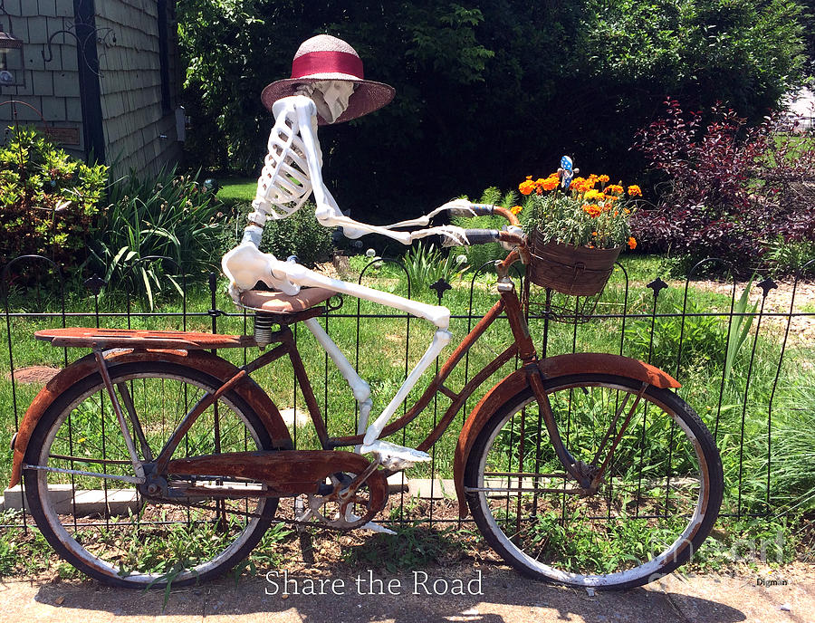 Bicycle Photograph - Share the Road by Steven Digman