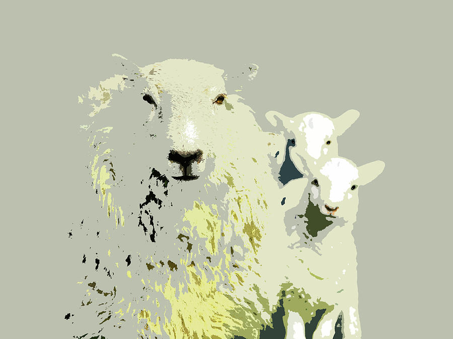 Sheep With Lambs by Mary Castellan