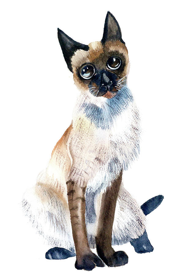 Siamese Painting - Siamese Cat Painting by Paintis Passion