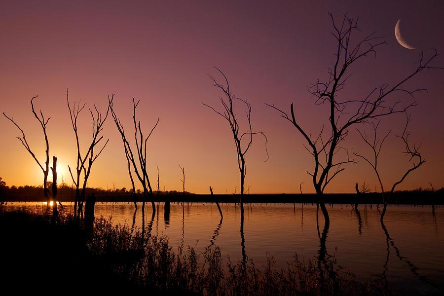 Landscape Photograph - Skeleton Dusk by Ryan Heffron