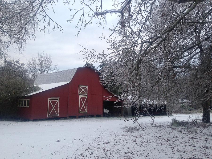 Skip Kelly's Barn by Francis Chester