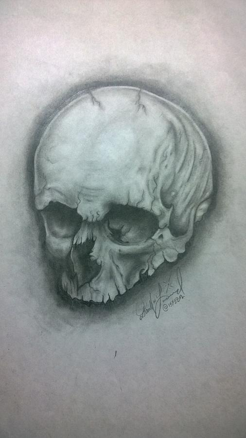 Portrait Drawing - Skull by Darrell Lormand