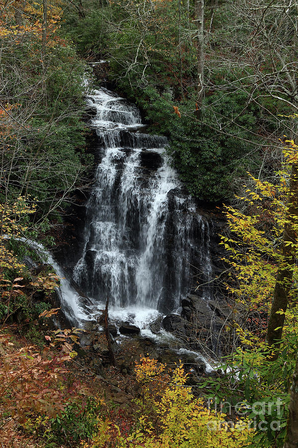 Nature Photograph - Soco Falls by Rick Mann