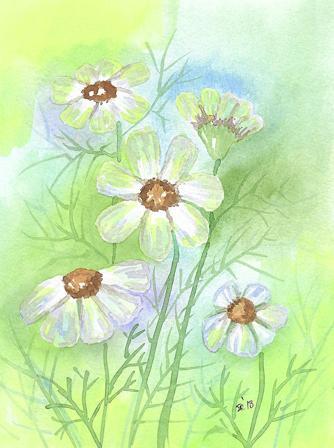 Watercolor Painting - Softness by Susan Campbell