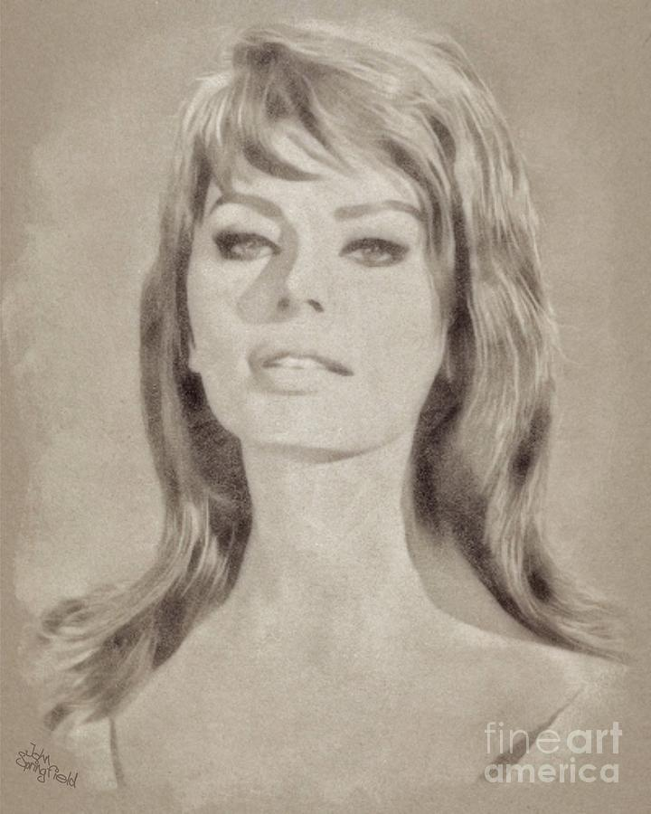 Sophia Loren Hollywood Actress Drawing