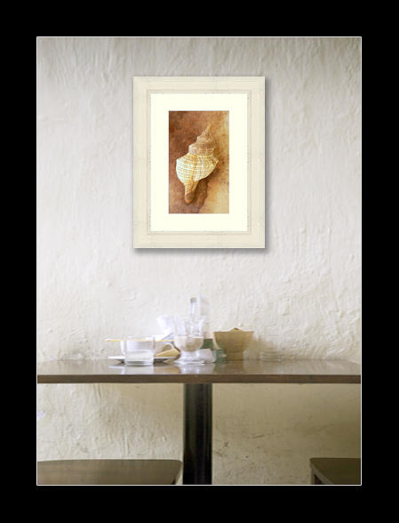 Still Life Photograph - Sounds Of The Sea by Holly Kempe