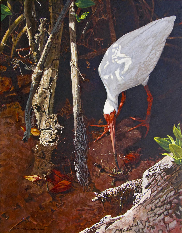 Waterfowl Painting - Sparring For Lunch by Peter Muzyka
