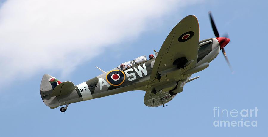 Spitfire Photograph - Spitfire by Angel  Tarantella
