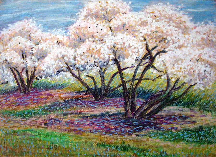 Oil Pastel Painting - Spring Has Sprung by Art Nomad Sandra  Hansen