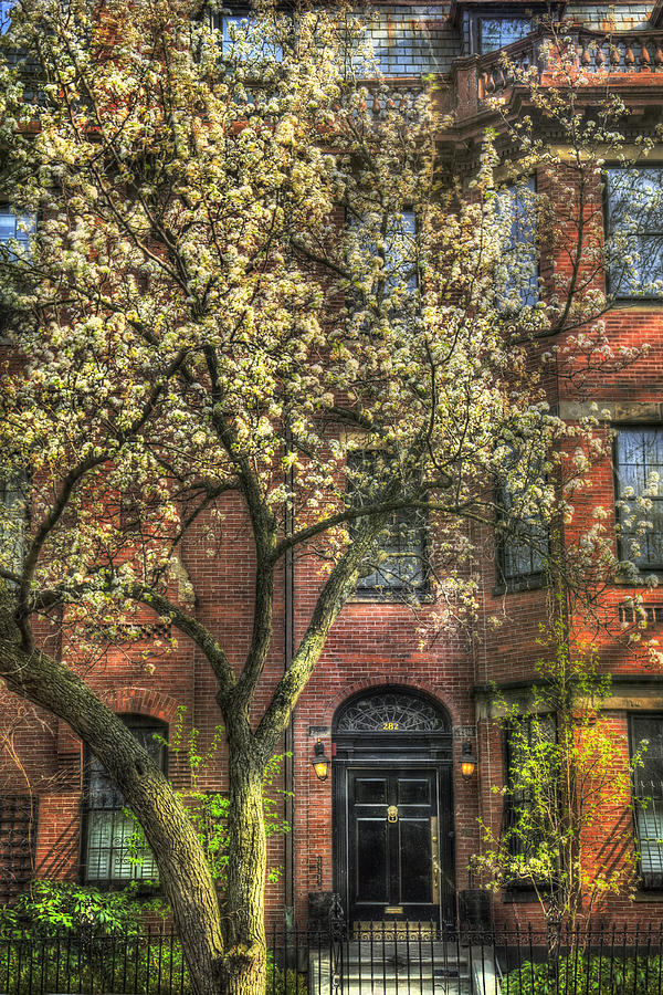 Back Bay Photograph - Spring In Boston - Back Bay 1 by Joann Vitali