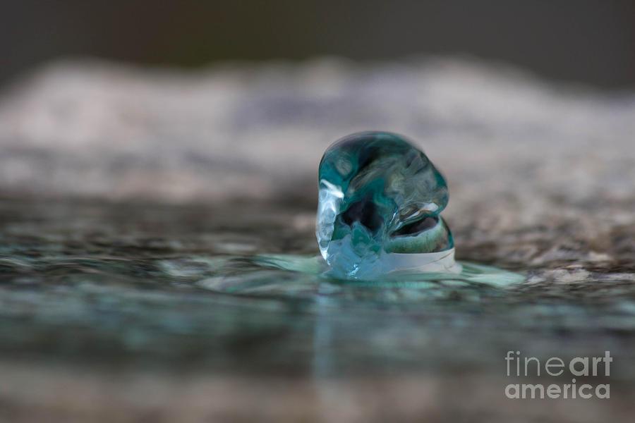 Water Photograph - Spring by Marta Grabska-Press