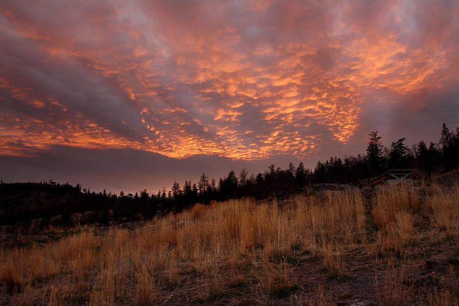 Magic Photograph - Steelhead Provincial Park Sunset by Pierre Leclerc Photography