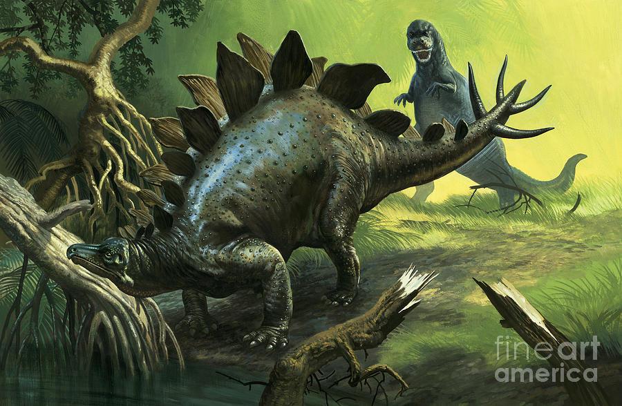Stegosaurus Painting By English School