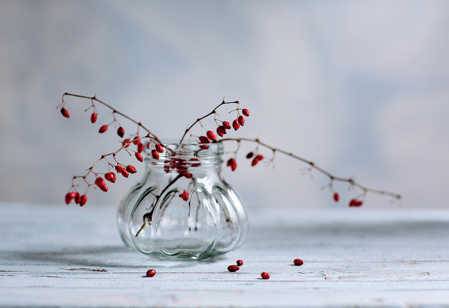 Still Life With Red Berries Photograph