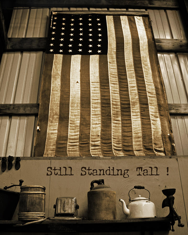 United States Photograph - Still Standing Tall by Joanne Coyle