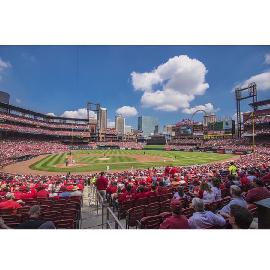 Buy Photograph - #stlouiscardinals #cardinals by David Haskett II