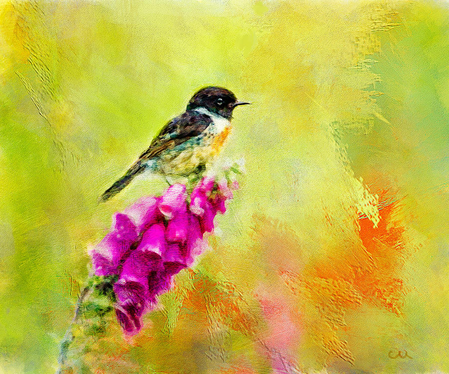 Stonechat Perched On A Flower Painting