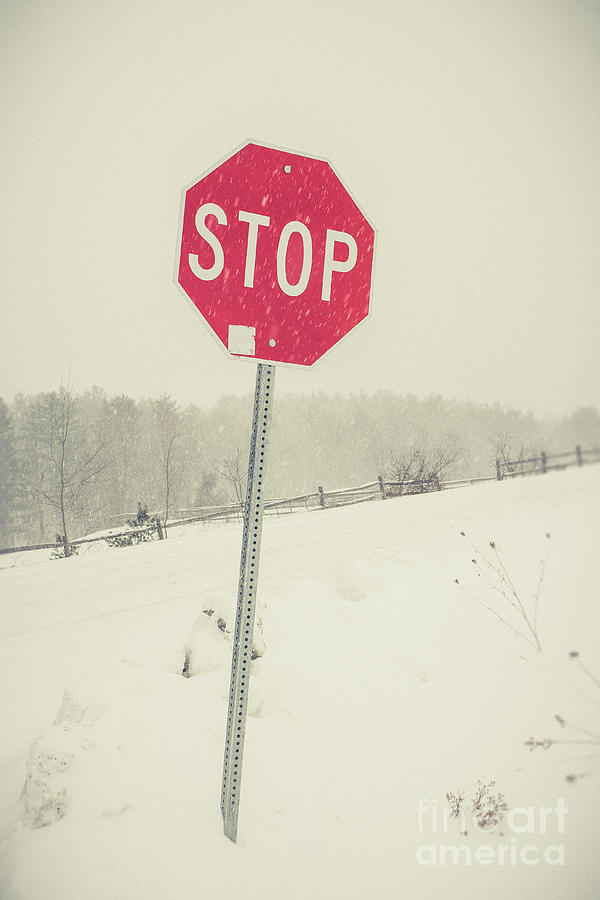 Snow Photograph - Stop by Edward Fielding