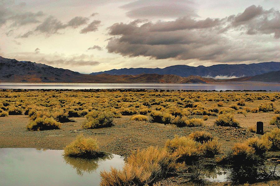 Desert Photograph - Storm In The Desert by Bill Mollet