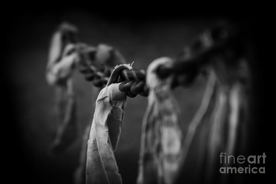 Strength Photograph - Strength by Sharon Mau